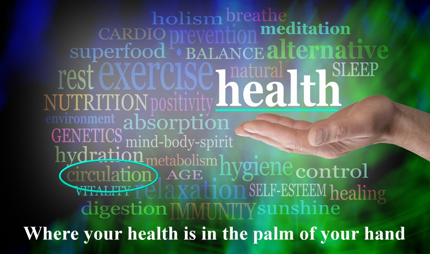 Your Health is in the Palm of Your Hand